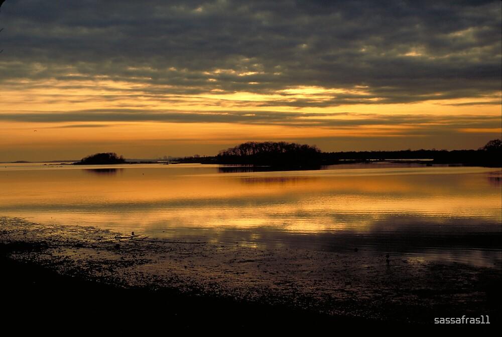Harbor Sunset by sassafras11