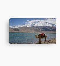 Phone coverage at Lake Kara Kul Canvas Print