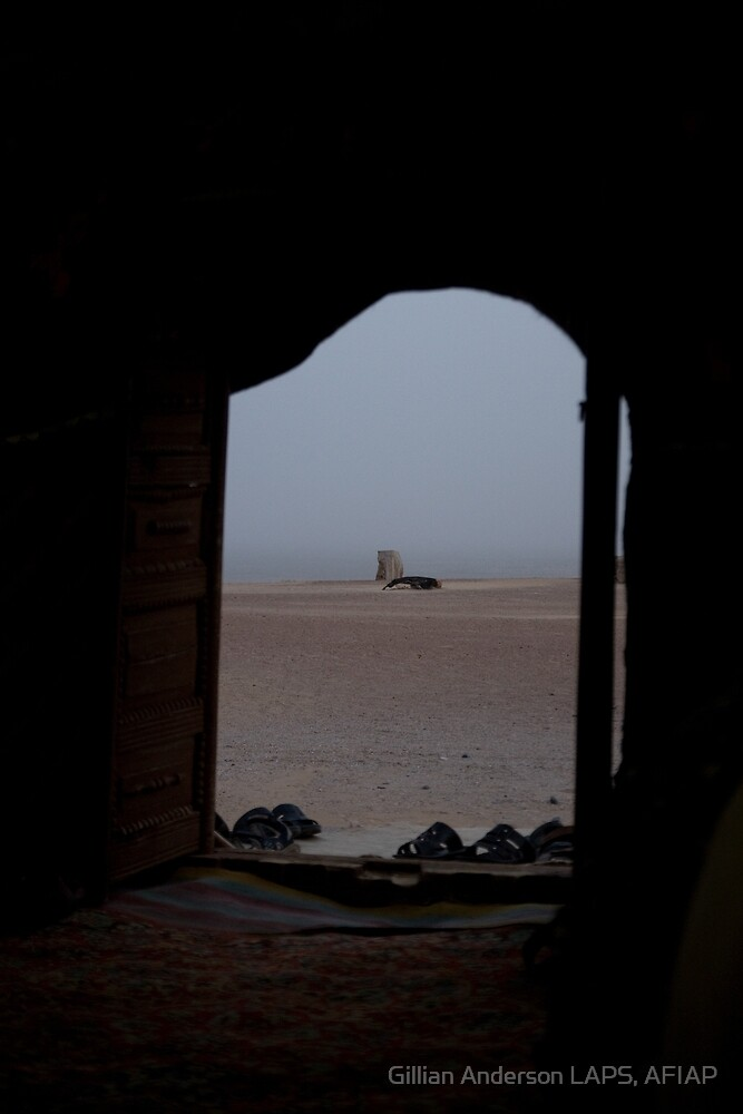 Through the yurt door by Gillian Anderson LAPS, AFIAP