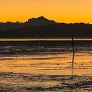 The Last Sunrise of 2014  by Jim Stiles