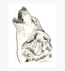 Spirit of Wolf - Shamanic Art Photographic Print