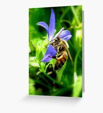 Bee & Flower Greeting Card