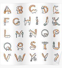 Circus cat alphabet Poster