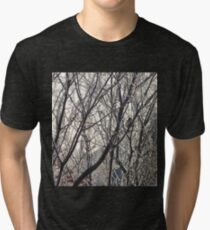 Bird on Winter Tree Tri-blend T-Shirt