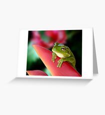 "A Frog's ""Point"" of View Greeting Card"