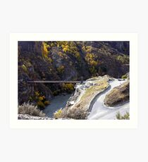 Home of the Bungy Art Print