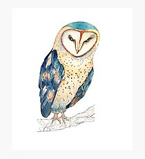 The colourful barn owl Photographic Print