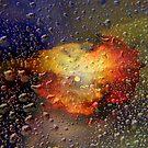 Rainy night by Vasile Stan