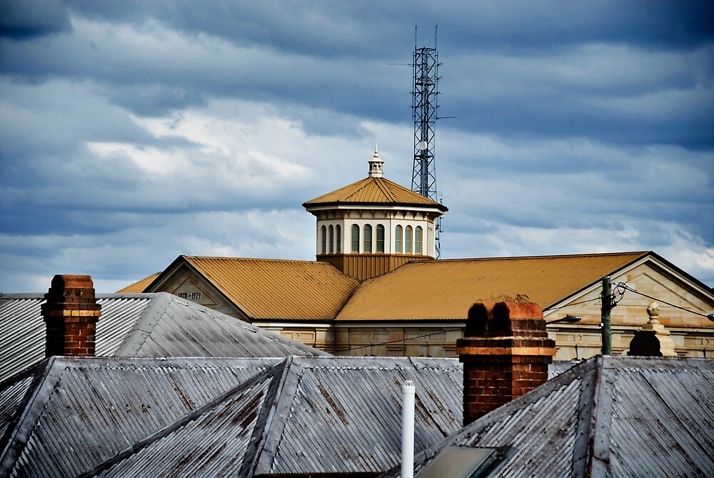 roof tops by theresa hall