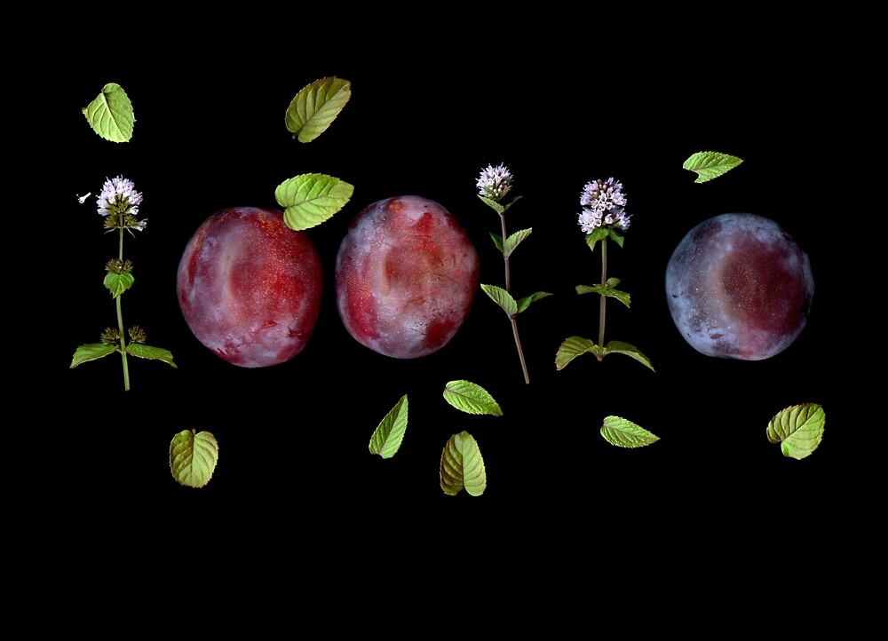 Plums and Mint by Gabriele Maurus