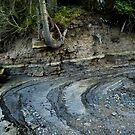 Stone Swept Shore by toby snelgrove  IPA