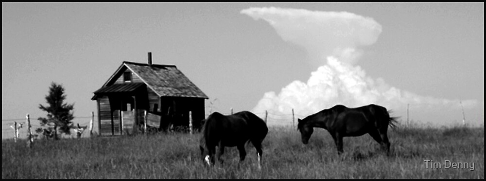 ~ Home On The Range ~ by Tim Denny