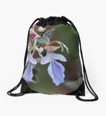 Tree Germander (Teucrium fruticans) Drawstring Bag