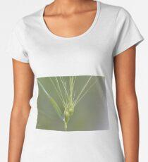 Ovate goatgrass (Aegilops geniculata) Women's Premium T-Shirt