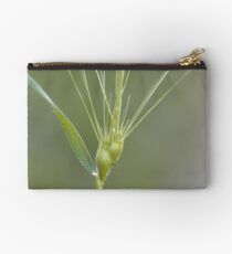 Ovate goatgrass (Aegilops geniculata) Studio Pouch