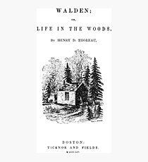 walden Photographic Print