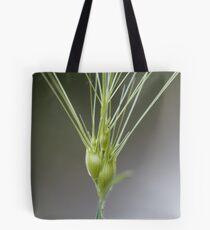 Ovate goatgrass (Aegilops geniculata) Tote Bag