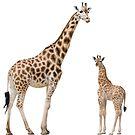 mom and baby giraffe by Prince-Dannie