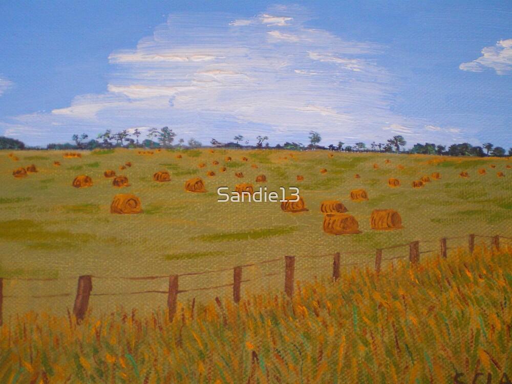 Hay Bales - Oil Painting by Sandie13