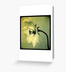 fresh as yesterday Greeting Card