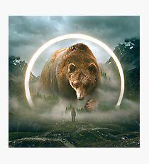aegis | bear Photographic Print