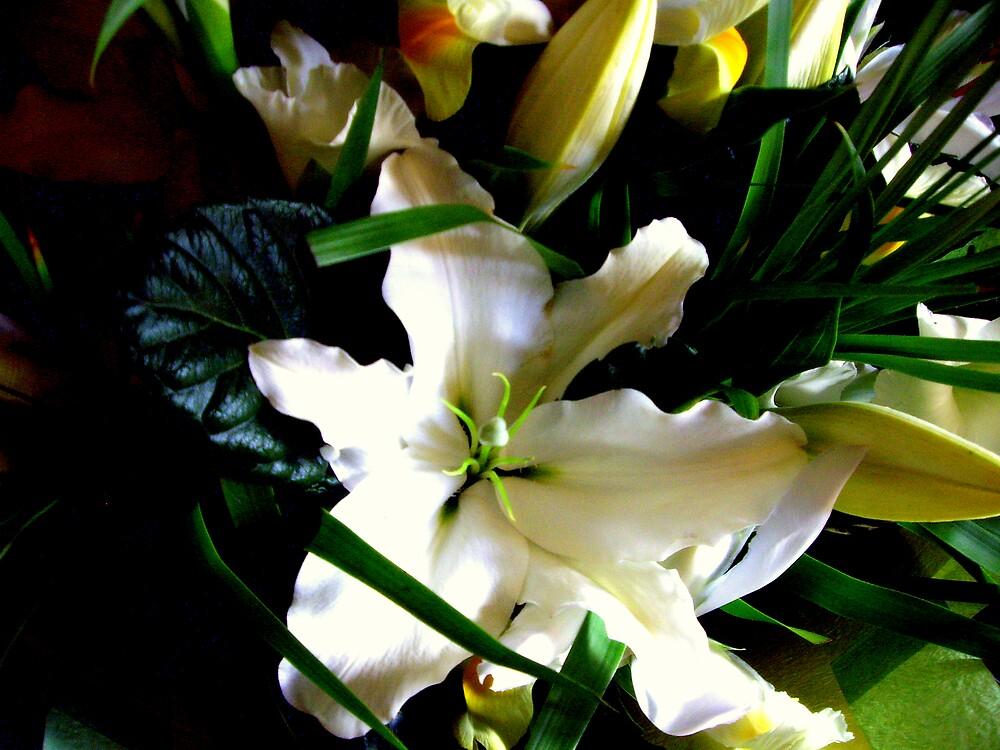 Oriental Lily by lurline