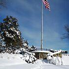 Ole Glory in Winter by Walter Sonny Manser