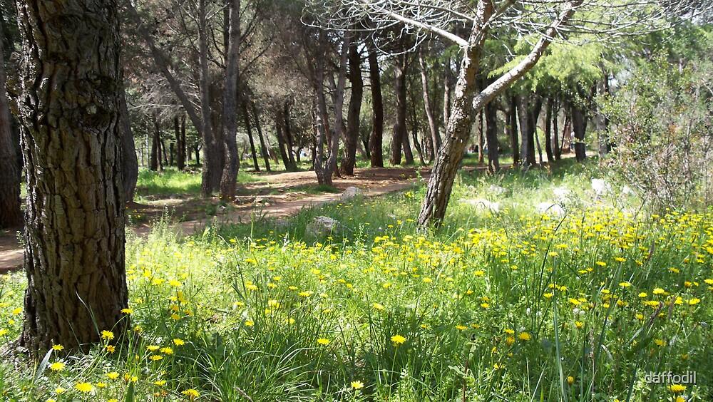 Underwood in spring by daffodil