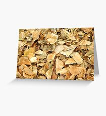 Texture of dry leaves Greeting Card