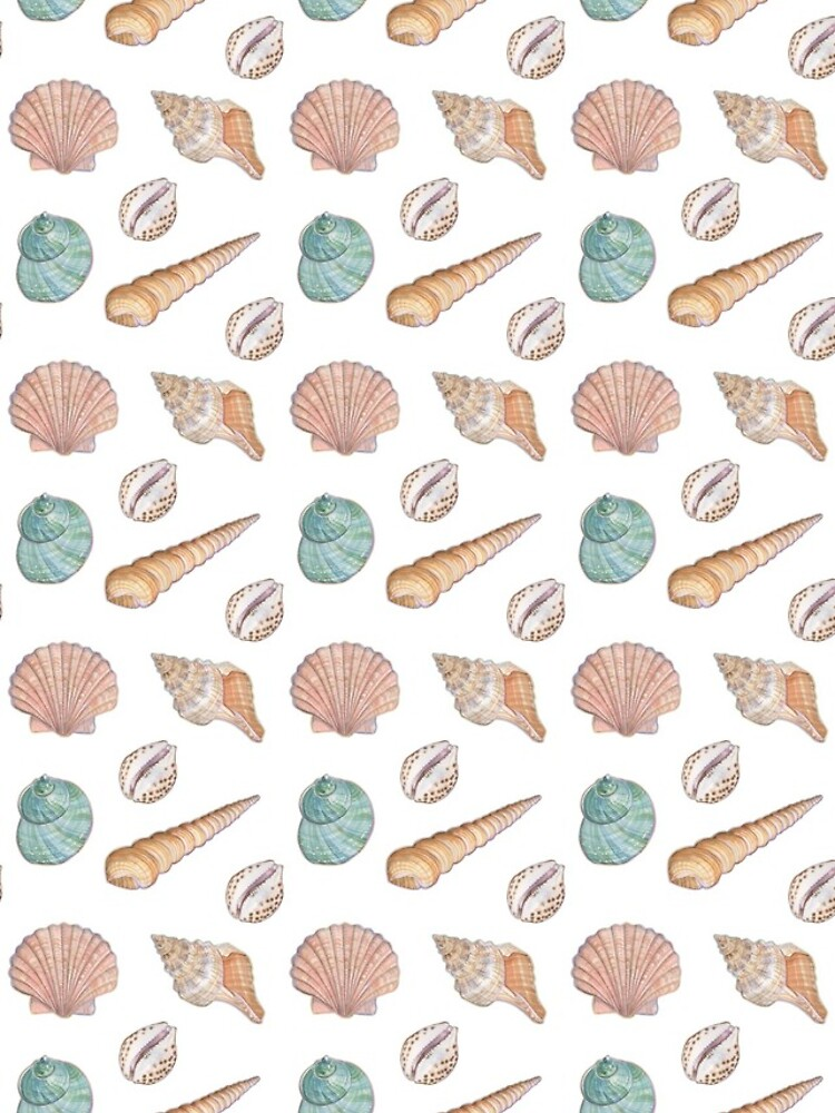 She sells seashells by ClareWillcocks