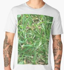 Grass closeup Men's Premium T-Shirt