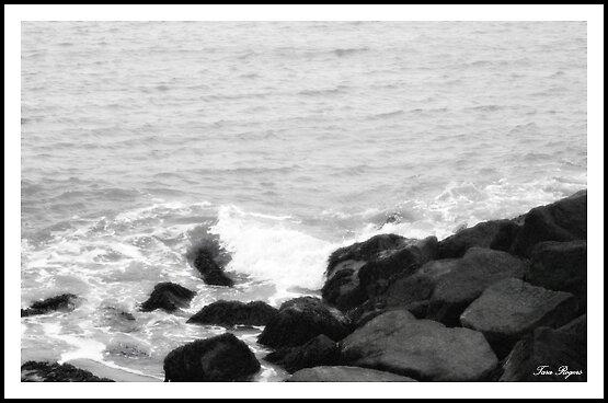 My Sea by Tara Leigh