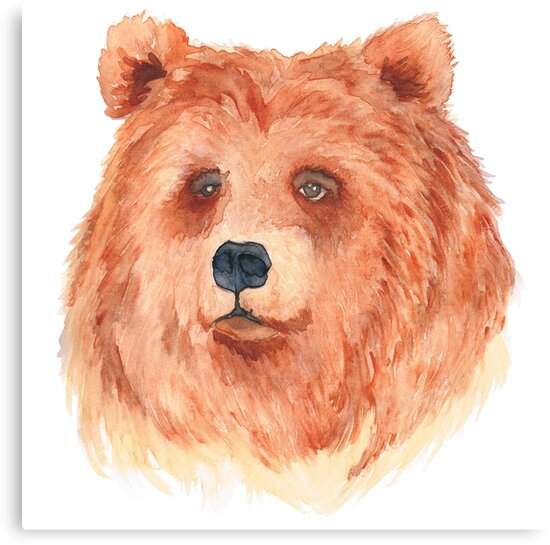 Boris the Brown Bear by Anna Lee