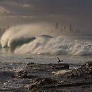 Evening Wave by Werner Padarin