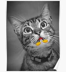 """Cat Hungry for """"Mouse"""" Poster"""