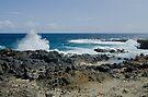 Sea Crashing Against Lava Rocks, Aruba by Gerda Grice