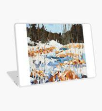 Winter in Gatineau Park Laptop Skin