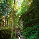 Cliff Side Stairs on Rim Trail of Robert Treman by David Lamb