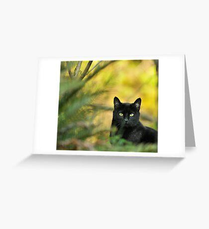 Black Drop Greeting Card