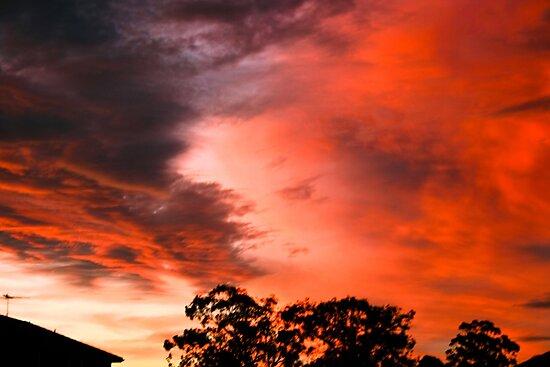 Sunset 01-01-09 by Tony Waite