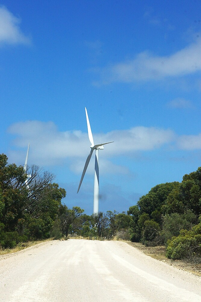 The road to green energy by Deidre Cripwell