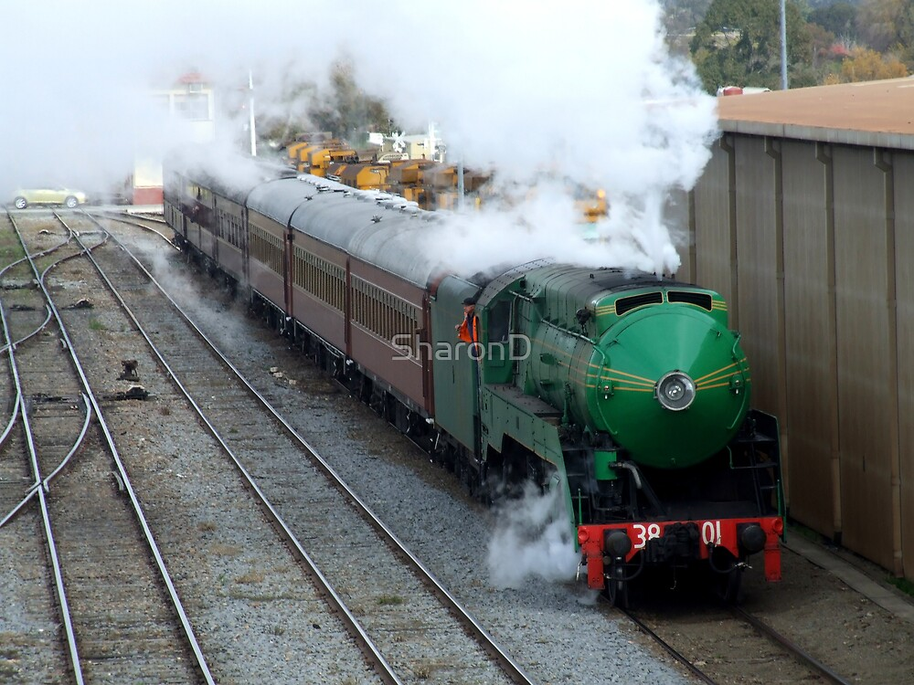 Steaming into Coota by SharonD
