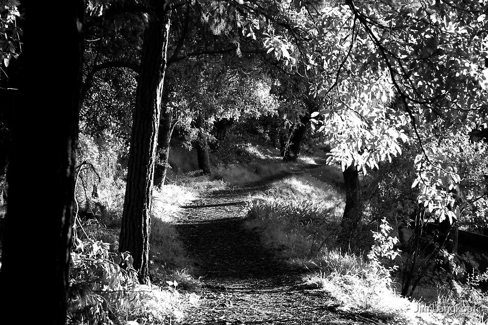 Mariah's Walk by Jim Langkopf