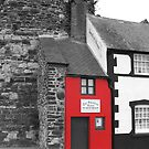 Smallest House in Great Britain  by Yampimon