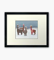 Winter Show Off Framed Print
