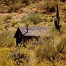 little desert shack.... by soulsease
