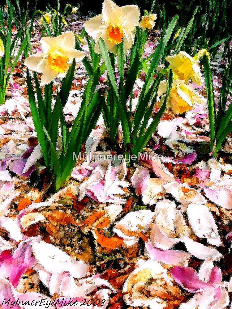 #319                 Daffodils & Magnolia Petals by MyInnereyeMike