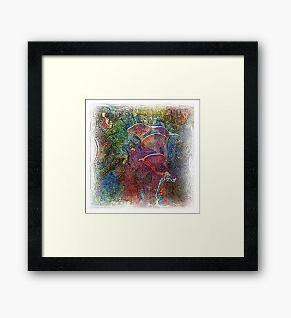 The Atlas Of Dreams - Color Plate 61 Framed Print