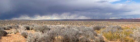 Storm front in Escalante, Utah by Brian Hendricks