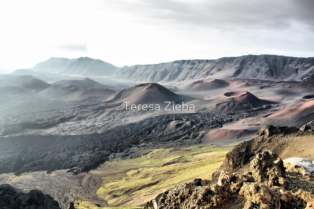 Haleakala Crater by Teresa Zieba